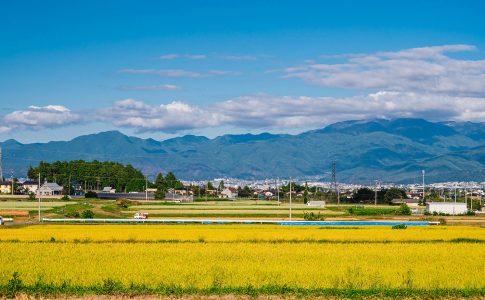 行政書士の業務【土地活用・農地転用・農地取得】
